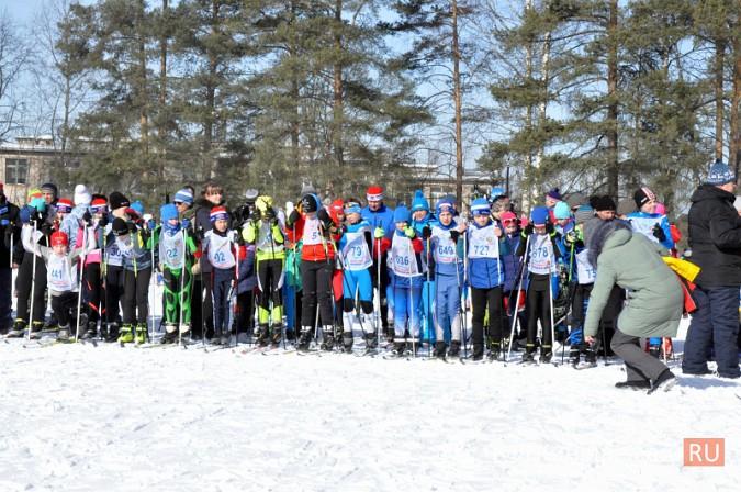 Кинешемские лыжники пробежали «Кохомский марафон» фото 21