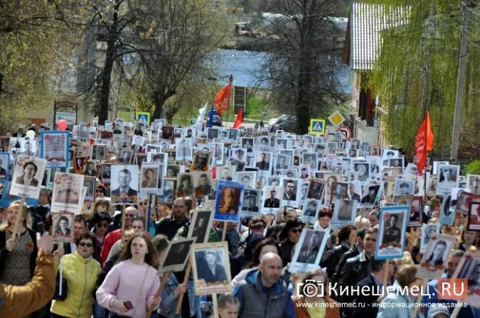 Шествие «Бессмертного полка» в Кинешме стало самым масштабным за годы его проведения фото 48