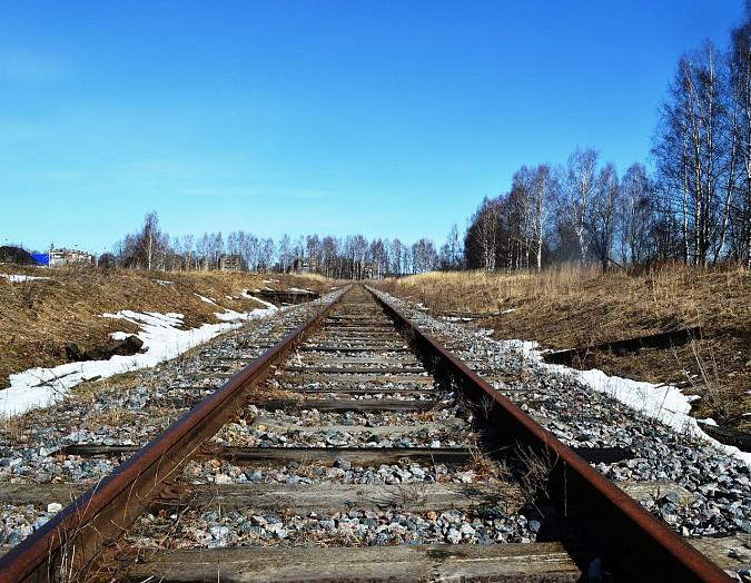 Под Кинешмой злоумышленник разбирал железную дорогу фото 2
