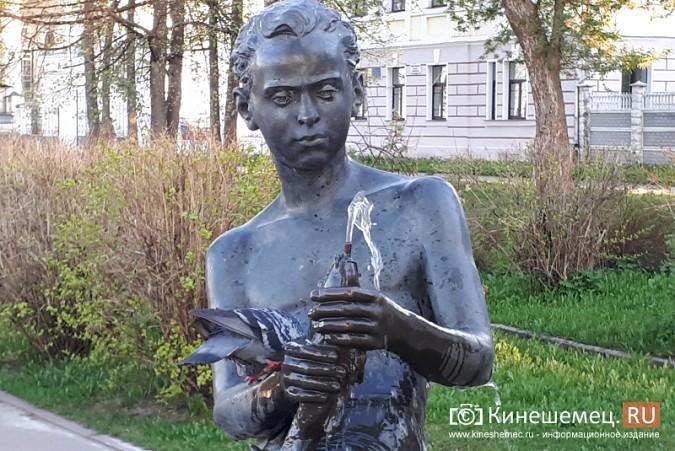 «Мальчик с рыбкой» превратился в водопой для кинешемских голубей фото 3