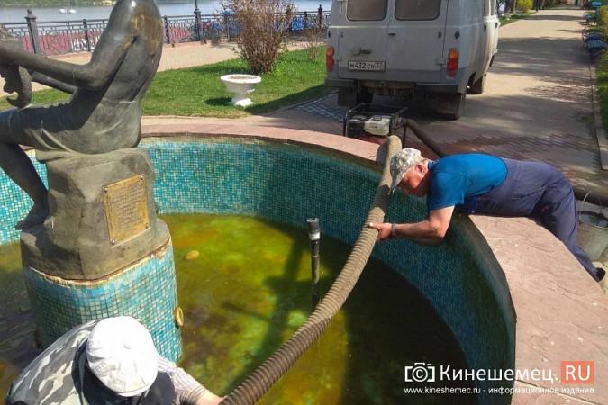 «Мальчик с рыбкой» превратился в водопой для кинешемских голубей фото 11