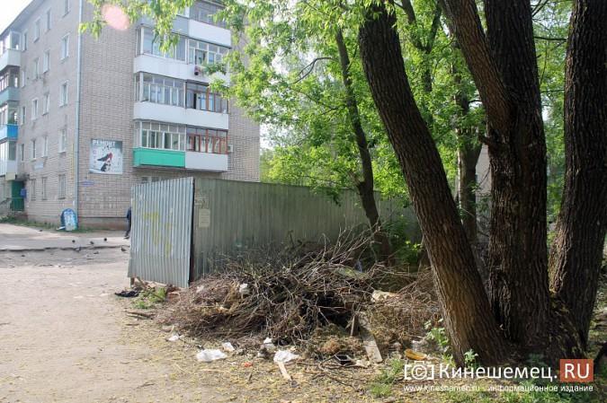 Мэрия Кинешмы пообещала убрать весь мусор после субботников до 23 мая фото 3