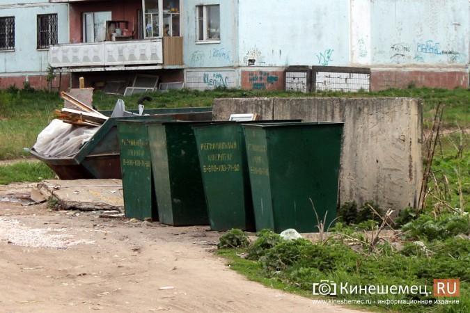 Мэрия Кинешмы пообещала убрать весь мусор после субботников до 23 мая фото 5
