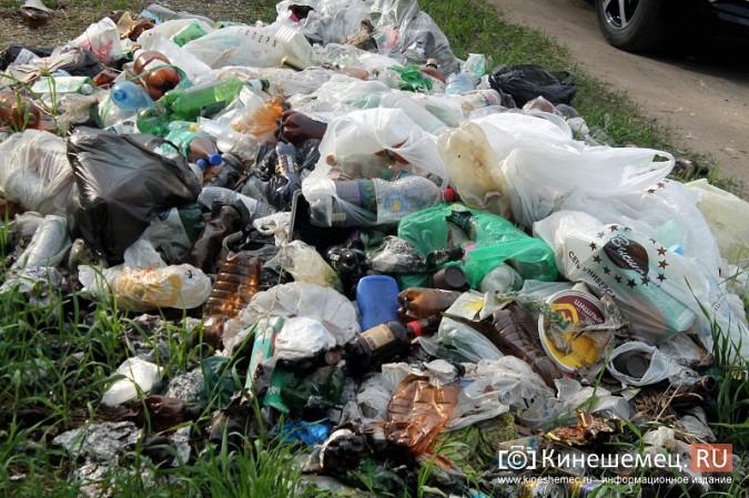 Мэрия Кинешмы пообещала убрать весь мусор после субботников до 23 мая фото 21