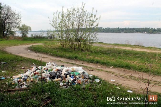Мэрия Кинешмы пообещала убрать весь мусор после субботников до 23 мая фото 17