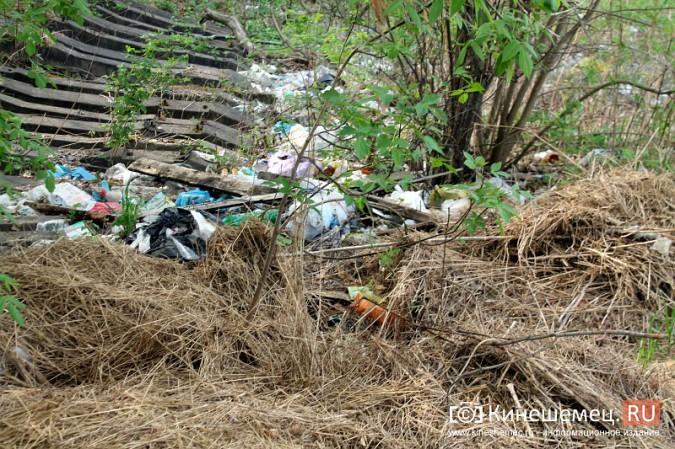 Мэрия Кинешмы пообещала убрать весь мусор после субботников до 23 мая фото 20