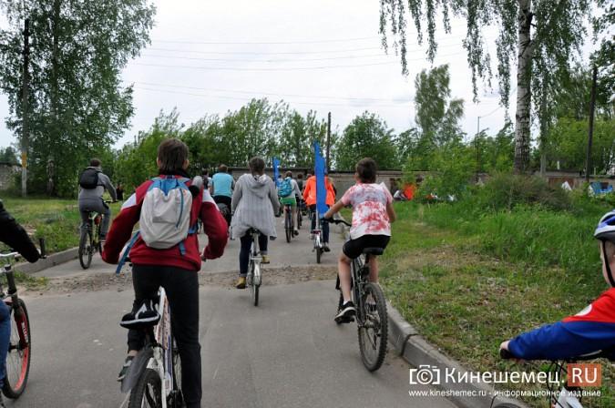 «Большой велопарад» в Кинешме собрал более 200 участников фото 23