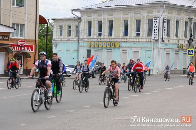 «Большой велопарад» в Кинешме собрал более 200 участников фото 30