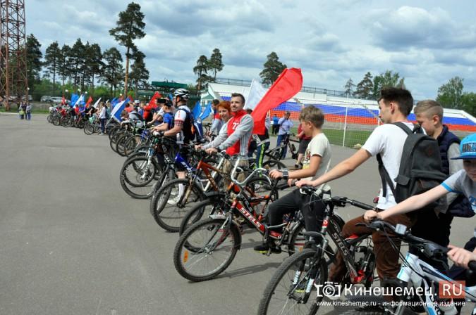 «Большой велопарад» в Кинешме собрал более 200 участников фото 7