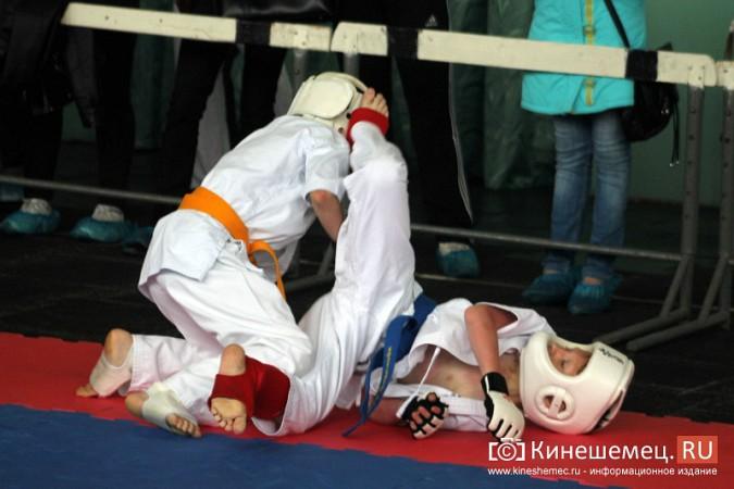 В Кинешме состязались каратисты фото 39