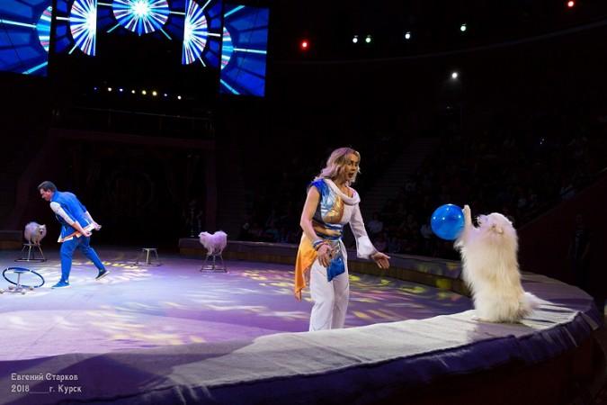 Легендарный цирк Юрия Никулина представляет фото 5