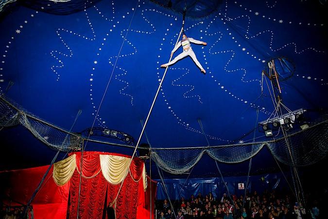 Цирк-шапито «Пегас» в Кинешме фото 4