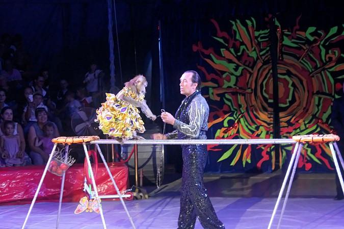 Цирк-шапито «Пегас» в Кинешме фото 9