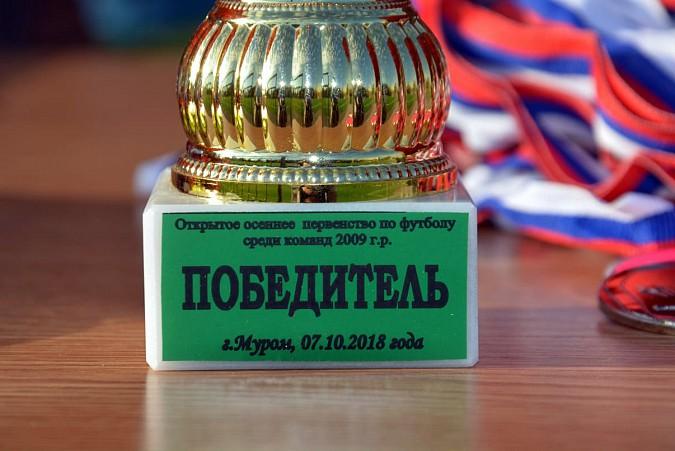 «Наши надежды» из Кинешмы выиграли турнир в Муроме фото 12