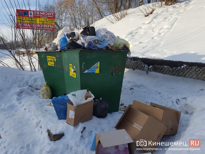 Мороз встал на пути мусоровозов фото 2