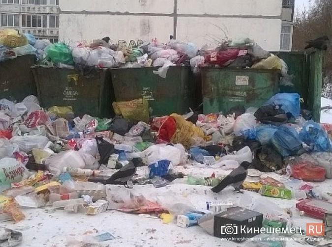 Мороз встал на пути мусоровозов фото 5