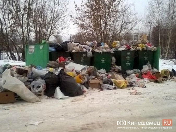 Мороз встал на пути мусоровозов фото 4