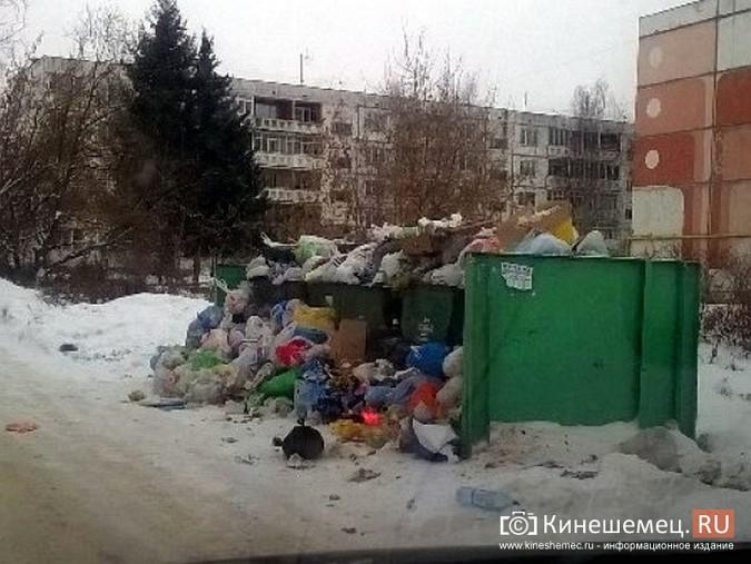 Мороз встал на пути мусоровозов фото 3