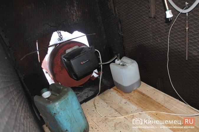 Кинешму атакуют стаи бродячих собак фото 3