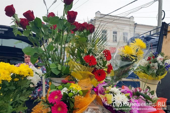 Цветочная ярмарка в Кинешме скатилась до уровня базара фото 6