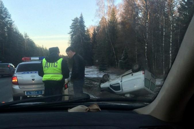 Лось спровоцировал ДТП в Ивановской области и убежал фото 2