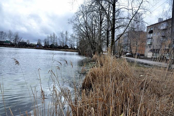 Кинешемка утопилась в озере фото 5