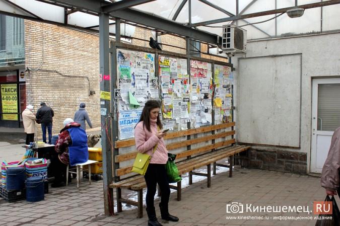 Остановочный павильон в центре Кинешмы загадили голуби фото 7