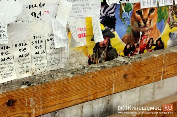 Остановочный павильон в центре Кинешмы загадили голуби фото 2