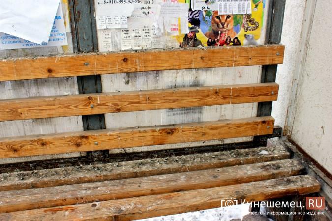 Остановочный павильон в центре Кинешмы загадили голуби фото 4
