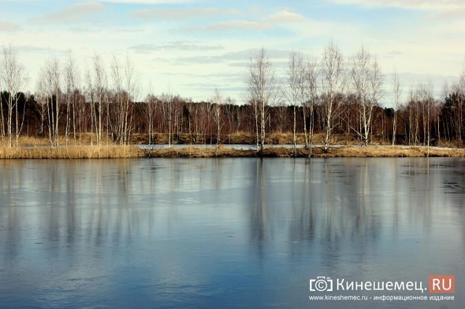 В черте Кинешмы расположены пруды с отходами производства уксусной кислоты фото 3