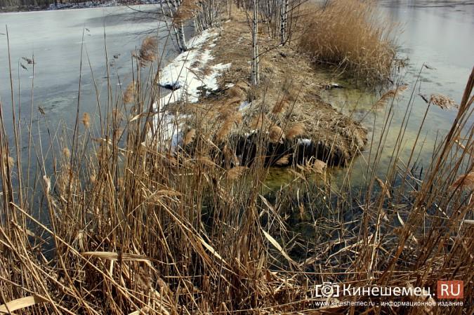 В черте Кинешмы расположены пруды с отходами производства уксусной кислоты фото 6