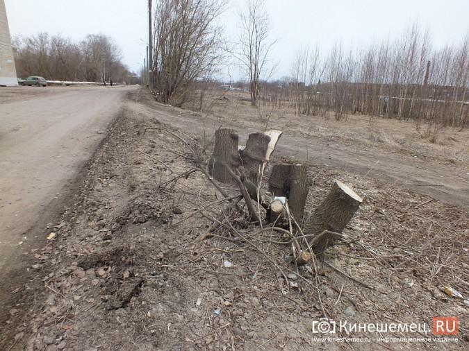 Жители улицы имени Юрия Горохова благодарят свою «управляшку» фото 10