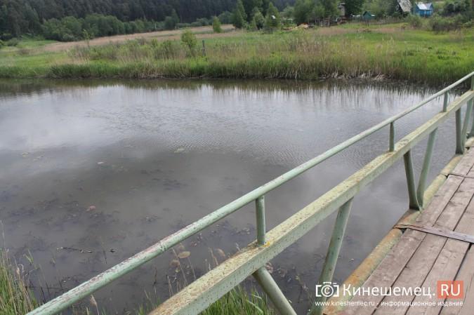 Ядовитый ручей отравляет воду у центрального пляжа Кинешмы фото 18