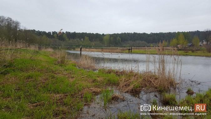 Ядовитый ручей отравляет воду у центрального пляжа Кинешмы фото 4