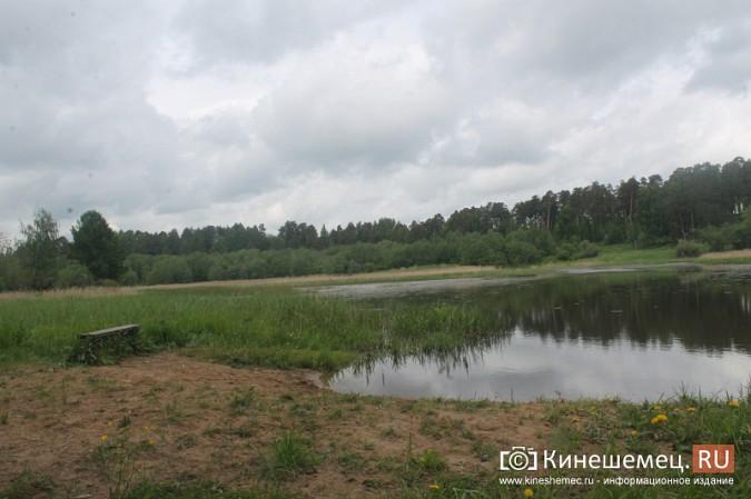 Ядовитый ручей отравляет воду у центрального пляжа Кинешмы фото 21
