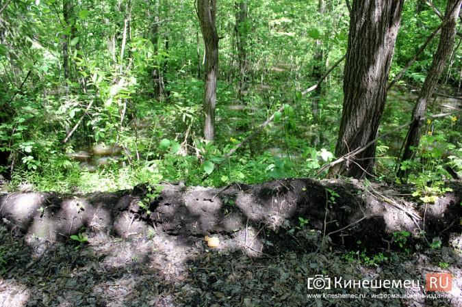 Дорога к лагерю «Радуга» требует вмешательства руководителей Ивановской области фото 13