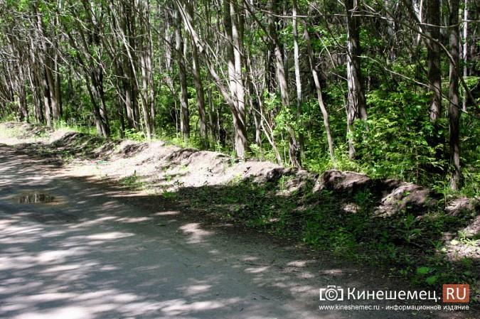 Дорога к лагерю «Радуга» требует вмешательства руководителей Ивановской области фото 12