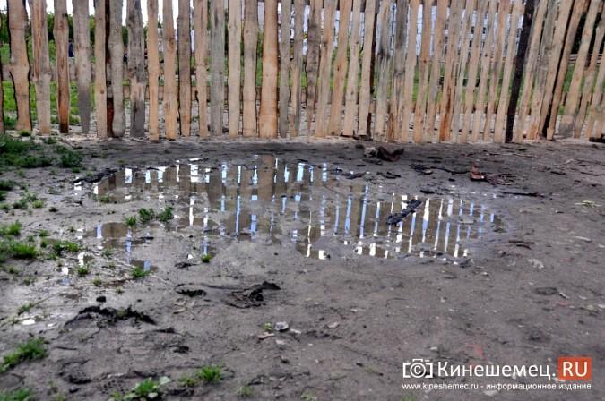 О недовольстве строительством на улице Менделеева жители Кинешмы проинформировали Путина фото 7