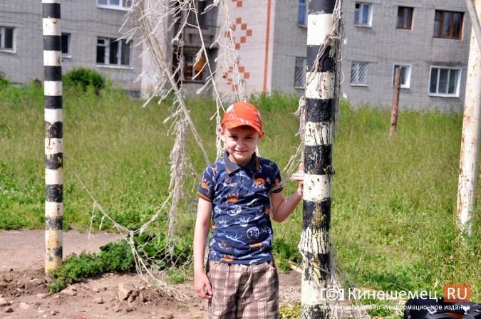 О недовольстве строительством на улице Менделеева жители Кинешмы проинформировали Путина фото 13