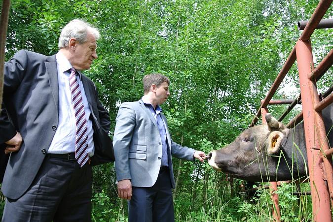 Депутат госдумы Юрий Смирнов заступился за отечественных быков — осеменителей фото 2