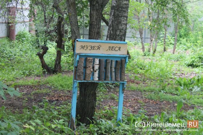 Кинешемские школы и детские сады ремонтируют подрядчики со всей России фото 16