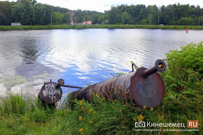 Волгу, Казоху и Кинешемку могут глобально очистить фото 12