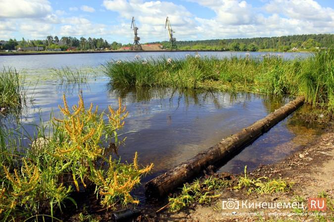 Волгу, Казоху и Кинешемку могут глобально очистить фото 5