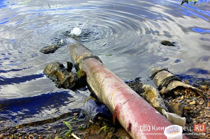 Волгу, Казоху и Кинешемку могут глобально очистить фото 8