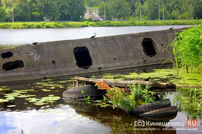 Волгу, Казоху и Кинешемку могут глобально очистить фото 14