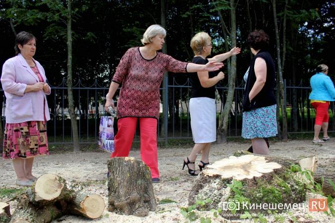 При благоустройстве места для народных гуляний в Кинешме спилили 35 кленов фото 8