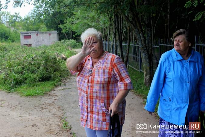 При благоустройстве места для народных гуляний в Кинешме спилили 35 кленов фото 4